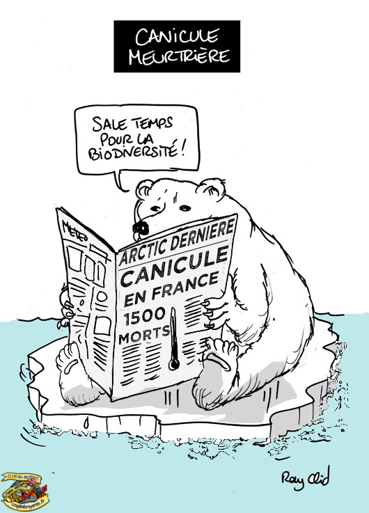 «Vive la France»